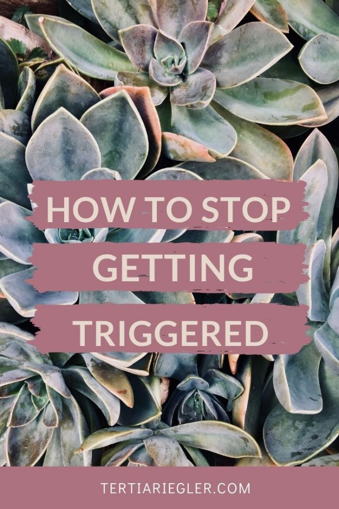 Do you feel powerless against being emotionally triggered?  If your emotions rule you, rather than the other way around, it disempowers you and leads to feelings of stress.  If you're HSP you might think you don't have a choice about being emotionally triggered.  Watch this video to learn how to manage your emotions.